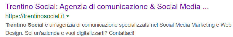 Google Trentino Social